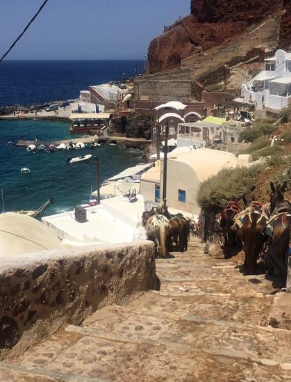 Donkeys at the bottom of the stairs at Amoudi Bay.