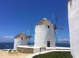 The Windmills!