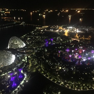 View of gardens by the bay from the top of marina bay sands