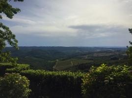 Views from Cennatoio winery