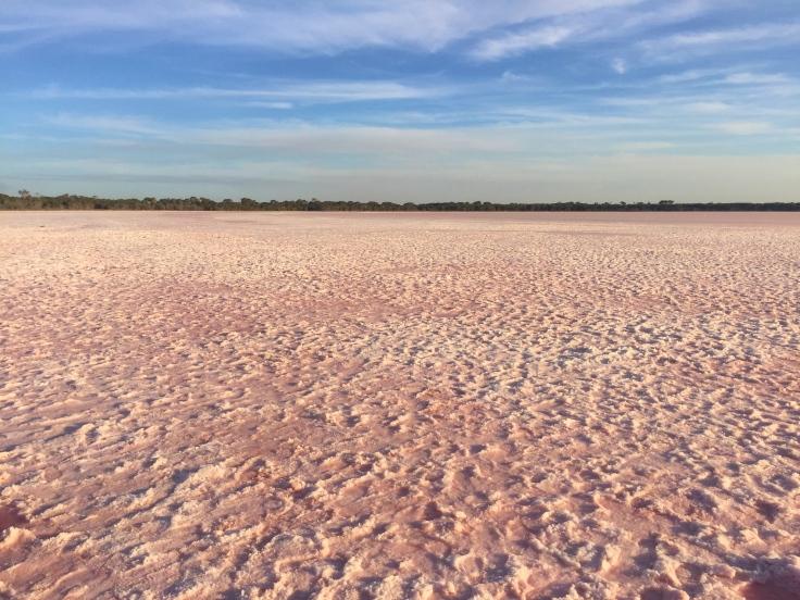 pink lakes 6